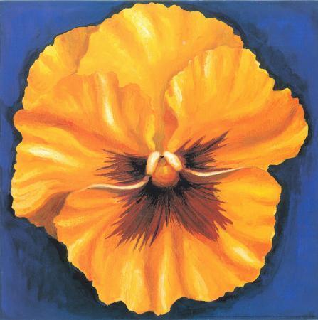 urpina-pansy-yellow
