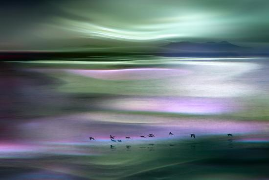 ursula-abresch-migrations-green-sky
