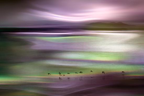 ursula-abresch-migrations-pink-sky