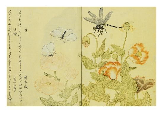 utamaro-illustration-from-a-picture-book-of-selected-insects