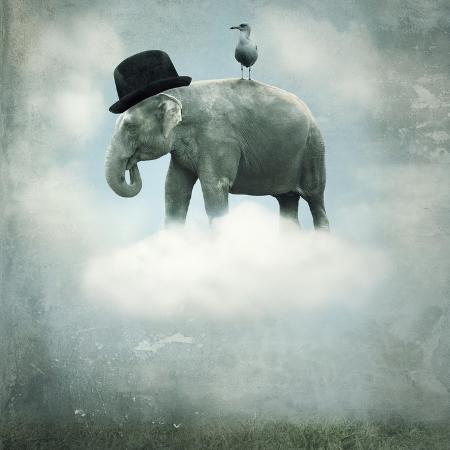 valentinaphotos-fantasy-elephant-flying
