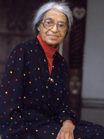 vandell-cobb-rosa-parks-mother-of-the-civil-rights-movement-1995
