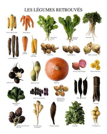 vegetables-of-yesteryears