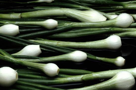 victor-de-schwanberg-spring-onions