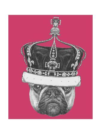 victoria-novak-original-drawing-of-french-bulldog-with-crown-isolated-on-colored-background