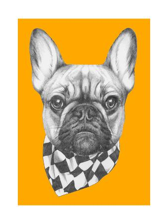 victoria-novak-original-drawing-of-french-bulldog-with-scarf-isolated-on-colored-background