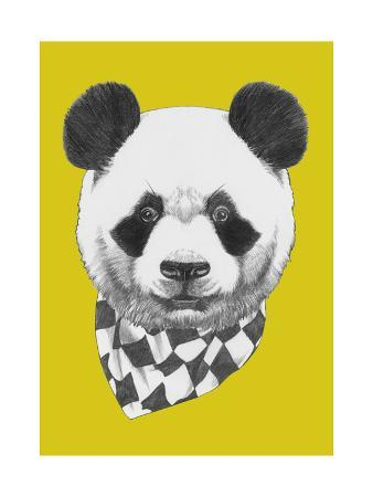 victoria-novak-original-drawing-of-panda-with-scarf-isolated-on-colored-background