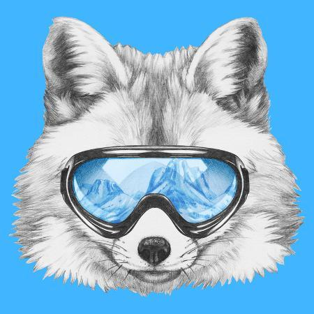 victoria-novak-portrait-of-fox-with-ski-goggles-hand-drawn-illustration