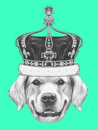 victoria-novak-portrait-of-golden-retriever-with-crown-hand-drawn-illustration