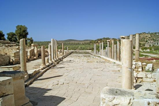 view-of-the-partially-restored-main-street-of-patara-turkey
