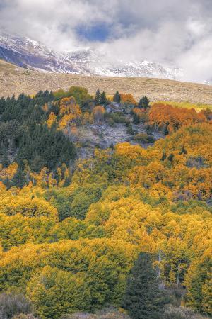 vincent-james-autumn-color-at-rush-creek-eastern-sierras