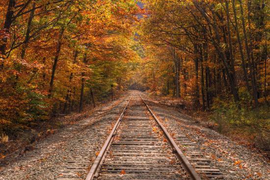 vincent-james-autumn-tracks-into-fall-bartlett-new-hampshire