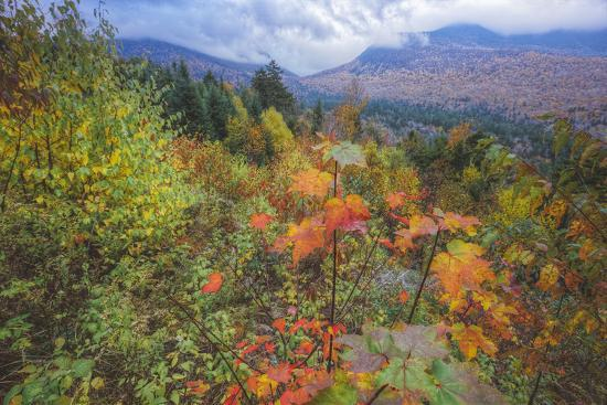 vincent-james-autumn-viewpoint-white-mountains-new-hampshire