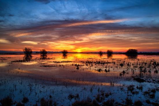 vincent-james-colorful-sunset-reflections-at-merced-wildlife-refuge