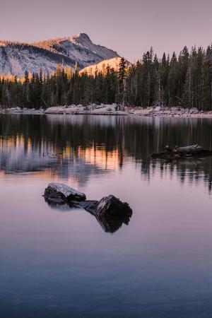 vincent-james-peaceful-morning-reflection-yosemite-tioga-pass-tenaya-lake