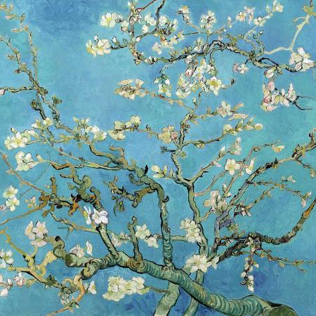 vincent-van-gogh-almond-branches-in-bloom-san-remy-c-1890