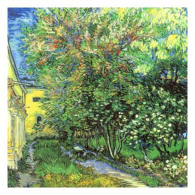 Jardin de l 39 hospice saint paul art print by vincent van gogh at - Abri jardin kouvola saint paul ...