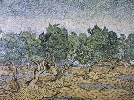 vincent-van-gogh-olive-orchard-violet-soil