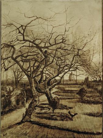 vincent-van-gogh-parsonage-garden-in-nuenen-march-1884