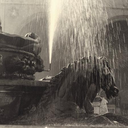 vincenzo-balocchi-horse-detail-of-the-neptune-fountain-piazza-della-signoria-florence