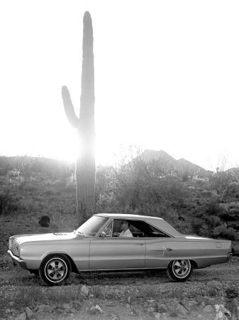 vintage-1967-dodge-in-the-desert