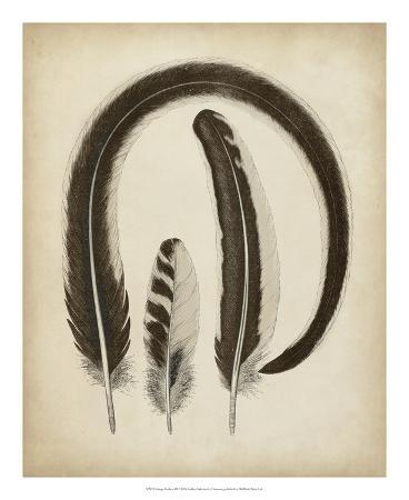 vintage-feathers-iii