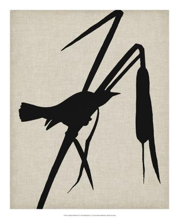 vision-studio-audubon-silhouette-ii