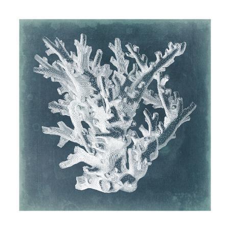 vision-studio-azure-coral-i