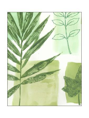 vision-studio-leaf-impressions-i