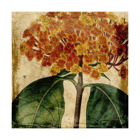 vision-studio-vibrant-floral-i