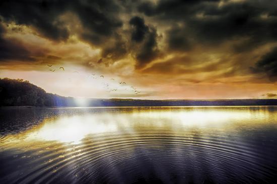 viviane-fedieu-daniel-divine-light