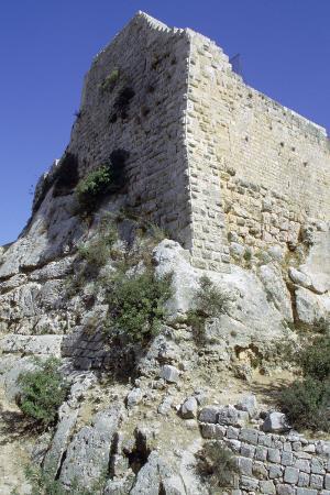 vivienne-sharp-ajlun-castle-jordan