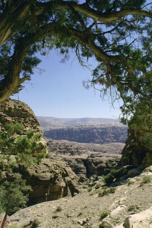 vivienne-sharp-walk-to-el-deir-the-monastery-petra-jordan