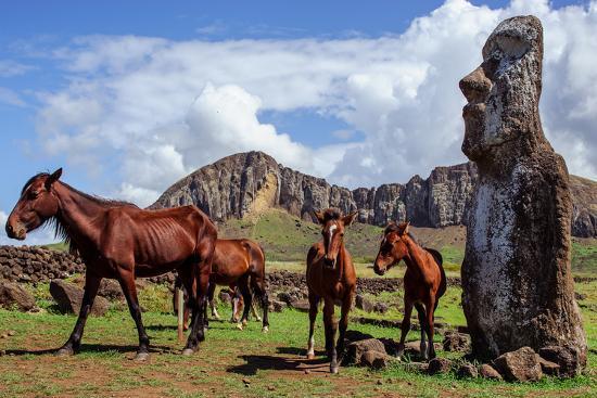 vladimir-krupenkin-horse-near-statues-on-the-isla-de-pascua-rapa-nui-easter-island