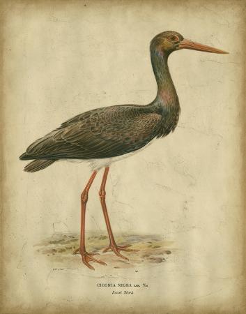 von-wright-vintage-heron-i