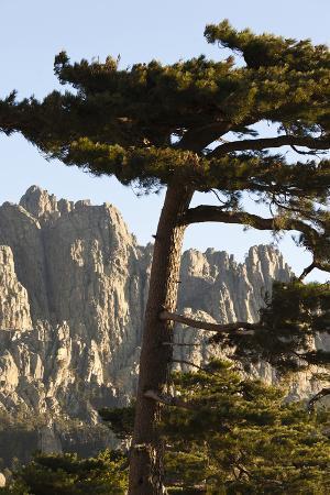 walter-bibikow-aiguilles-de-bavella-peaks-la-alta-rocca-corsica-france