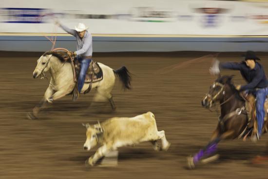walter-bibikow-cowboy-rodeo-competition-oklahoma-city-oklahoma-usa