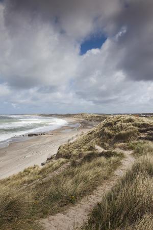 walter-bibikow-denmark-jutland-klitmoller-windsurfing-capital-of-denmark-beachfront-on-the-skagerrak