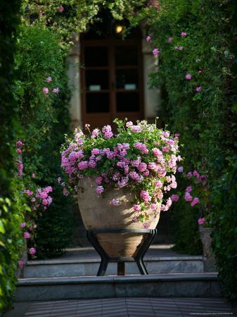 walter-bibikow-garden-detail-san-domenico-palace-hotel-taormina-sicily-italy