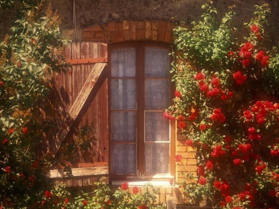 walter-bibikow-house-with-summer-roses-in-bloom-vaucluse-france