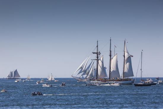 walter-bibikow-massachusetts-cape-ann-gloucester-annual-gloucester-schooner-festival-schooner-parade-of-sail