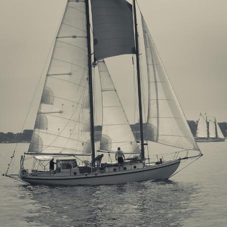 walter-bibikow-massachusetts-gloucester-schooner-festival-sail-boats