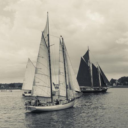 walter-bibikow-massachusetts-schooner-festival-schooners-in-gloucester-harbor
