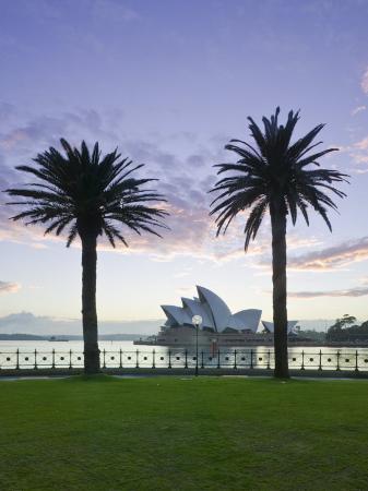 walter-bibikow-new-south-wales-sydney-sydney-opera-house-through-palms-australia