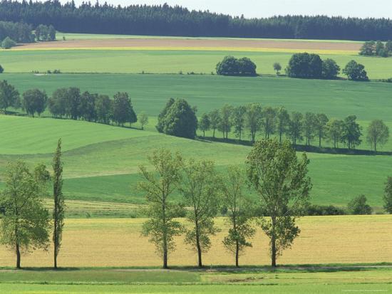 walter-bibikow-springtime-in-kamen-bohemian-fields-czech-republic
