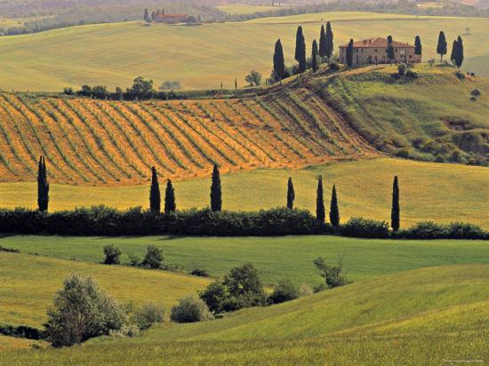walter-bibikow-val-d-orcia-tuscany-italy