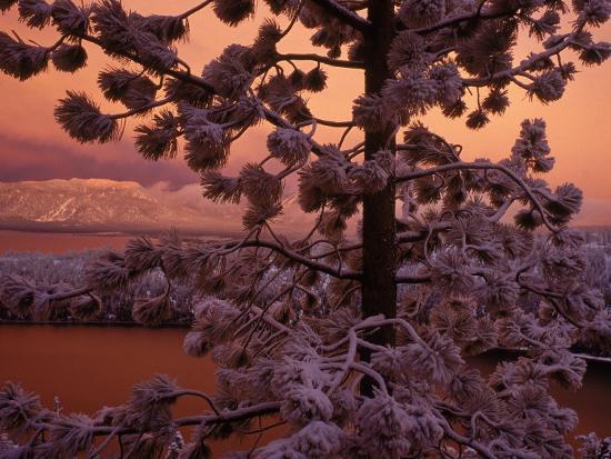 wayne-hoy-lake-tahoe-at-sunset-with-snow-california