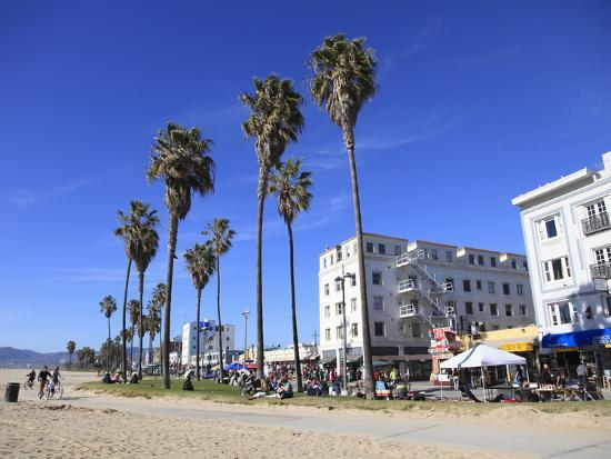 wendy-connett-venice-beach-los-angeles-california-united-states-of-america-north-america