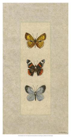 wendy-russell-butterfly-trio-ii
