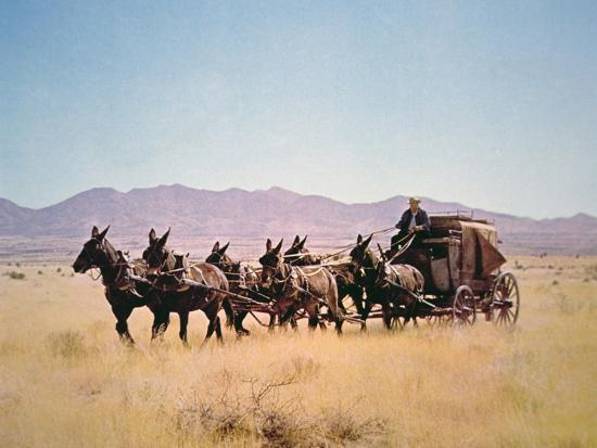 western-stagecoach-pulled-by-a-six-mule-team